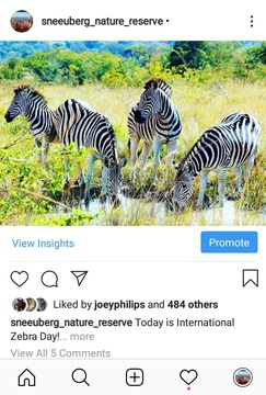 Paid Facebook Ads Post on Instagram, Eco Africa Digital provide Paid Social Media services for Tourism Destinations In Africa, includes  Facebook Ads for Guest Houses, Lodges, Hotels and B&B's, Golf Resorts and Island Getaways.